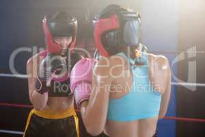 Young female boxers wearing protective sportswear