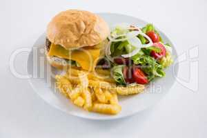 Burger with salad and French fries in plate
