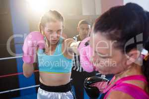 Referee looking at female boxers fighting in boxing ring