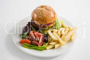 French fries with salad and burger