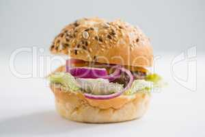 Close up of hamburger with black sesame seed