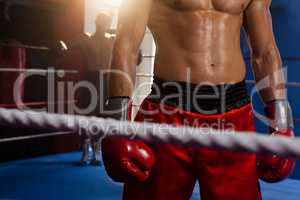 Boxers standing in boxing ring