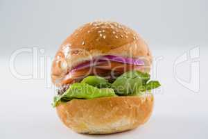 Close up of hamburger with sesame seed