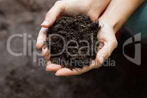 Cropped hands of female gardener holding soil