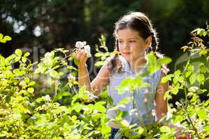 Girl looking at white flowers in backyard