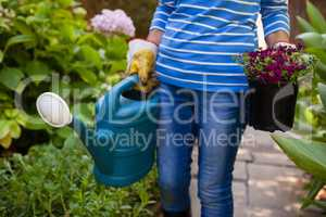 Midsection of senior woman holding watering can and flower pot amidst plants