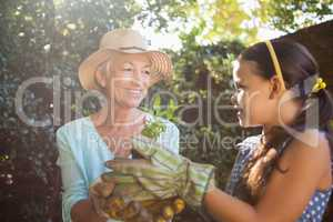 Smiling senior woman with granddaughter holding seedling