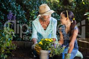 Happy grandmother and granddaughter planting flower pots