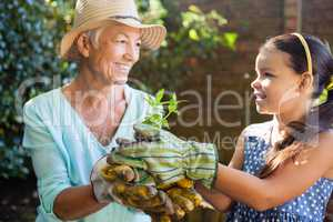Smiling granddaughter and grandmother holding seedling