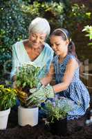 Senior woman teaching gardening to granddaughter at backyard
