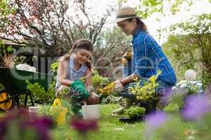 Mother giving seedling to daughter while gardening