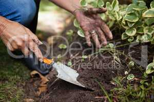 Cropped image of senior woman digging soil with trowel
