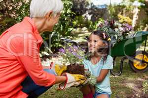 Smiling girl looking at grandmother while giving flowering pot