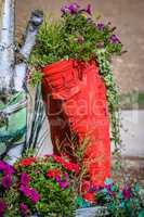 ornamental red trouser as flower pot