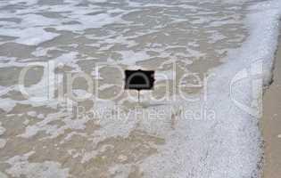 Empty black plate on the seashore