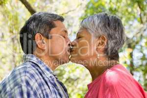Senior couple kissing each other in garden