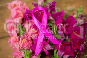 Close-up of pink Breast Cancer Awareness ribbon on flowers