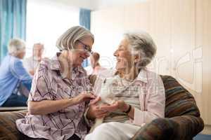 Senior women talking while stroking kitten