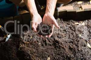 Hand of man holding soil