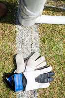 Overhead view of sports gloves