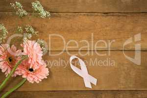 Overhead view of pink Breast Cancer Awareness ribbon by gerbera flowers