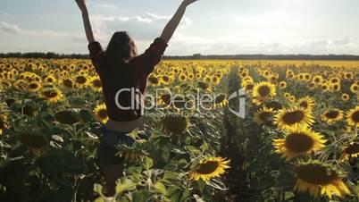 Charming woman enjoying leisure in sunflower field