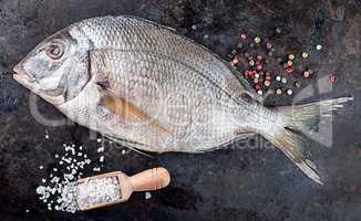 Dorado fish on black pan