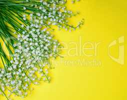 Bouquet of white flowering lilies of the valley