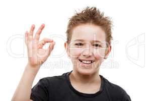 Beauty smiling young teenager boy gesturing OK or success sign