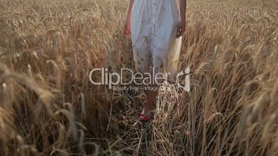 Slim female legs walking in ripe wheat field