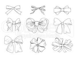 Bow drawn. Fashion accessory sign. Gentle bow ribbon isolated sk