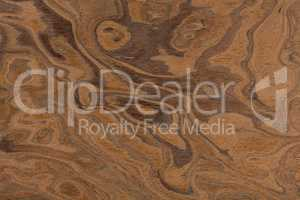 Californian walnut burl design texture. Natural background close