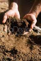 Man holding soil in garden
