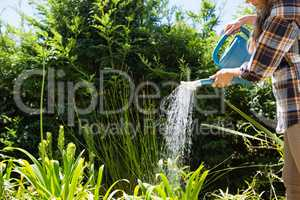 Woman watering plants with watering can in garden