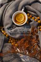 Autumn berry, lemon tea and leaves on blanket
