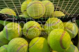 Racket on tennis balls in bucket