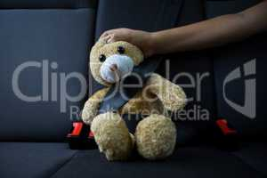 Teenage girl sitting with teddy bear in the back seat of car