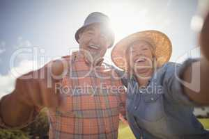 Smiling senior couple standing in lawn on a sunny day