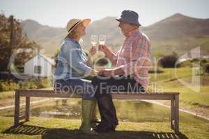 Senior couple toasting glasses of wine while sitting on a bench in lawn