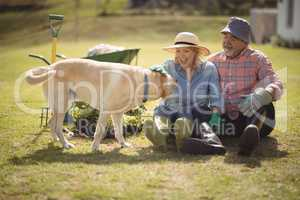 Senior couple caressing dog while sitting in their lawn.