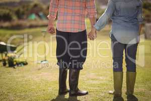 Senior couple holding hands and standing in their lawn on a sunny day