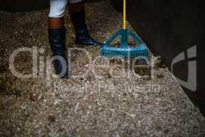 Man using broom to clean the stable