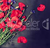 Bouquet of blooming red poppies and blue cornflowers