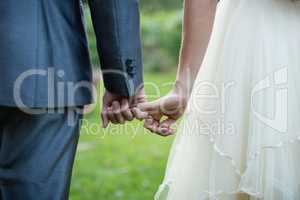 Wedding couple holding hands in garden