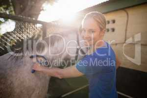 Young woman cleaning horse at barn