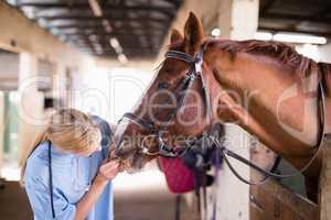 Female vet checking horse teeth
