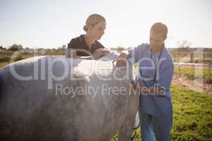 Woman stroking while vet giving injection at horse