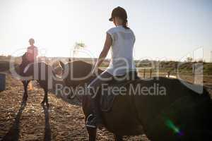 Female jockeys riding horse