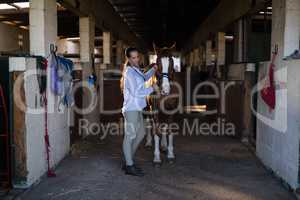 Female vet examining horse at stable