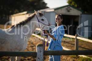 Portrait of happy vet stroking horse